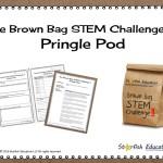 The Brown Bag Challenge II- Pringle Pod