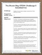 BrownBagII_insulatedIceImage2